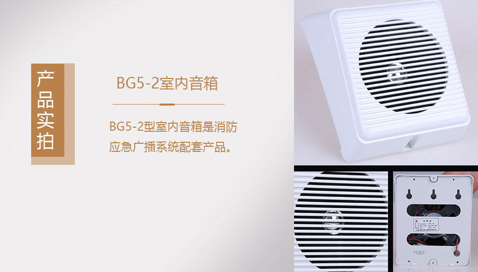 BG5-2室内音箱实拍图