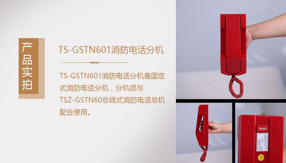 海湾TS-GSTN601消防电话分机实拍图